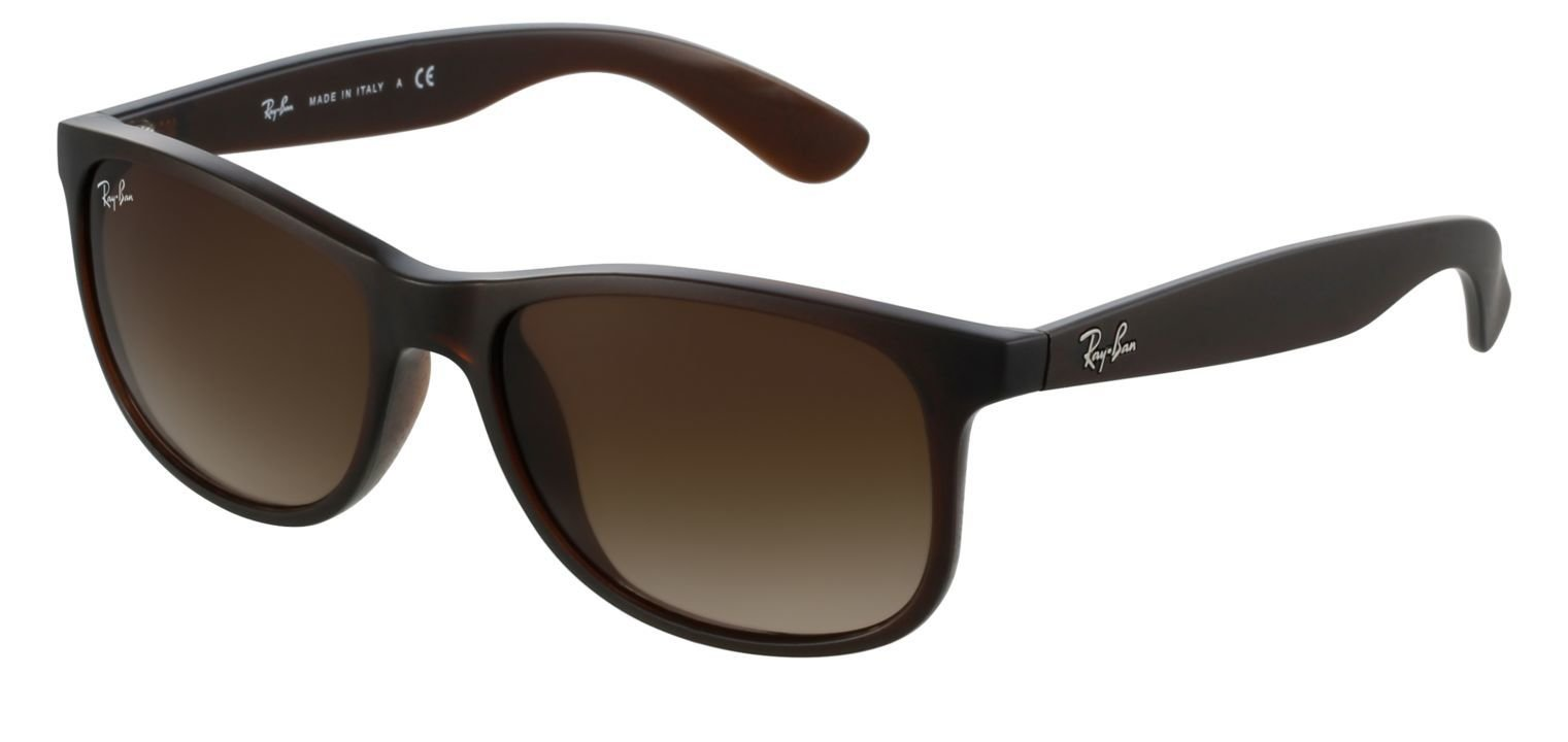 Ray-Ban RB4202 Marron